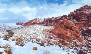 Winter Wonders at Red Rock