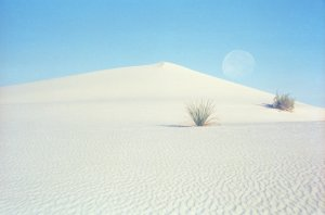 Morning Moon, White Sands New Mexico